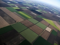 field-patterns-on-the-darling-downs-jpg